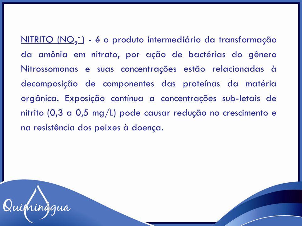 NITRITO (NO 2 - ) - é o produto intermediário da transformação da amônia em nitrato, por ação de bactérias do gênero Nitrossomonas e suas concentraçõe