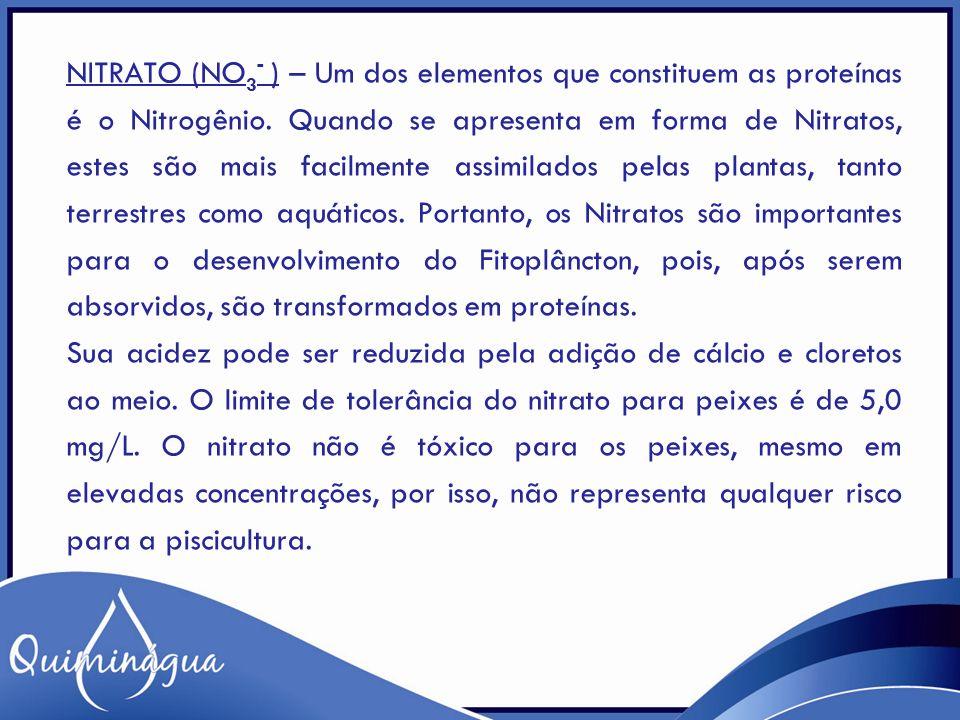 NITRATO (NO 3 - ) – Um dos elementos que constituem as proteínas é o Nitrogênio. Quando se apresenta em forma de Nitratos, estes são mais facilmente a