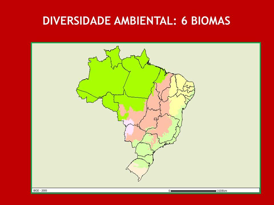 DIVERSIDADE AMBIENTAL: 6 BIOMAS