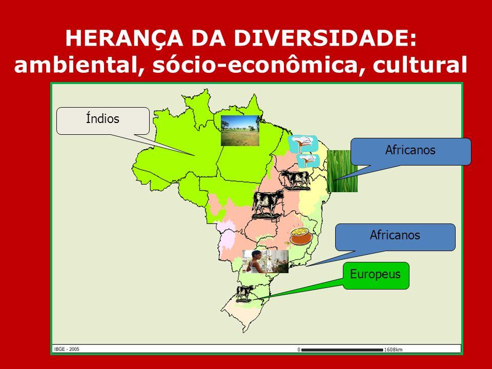 HERANÇA DA DIVERSIDADE: ambiental, sócio-econômica, cultural Africanos Europeus Índios