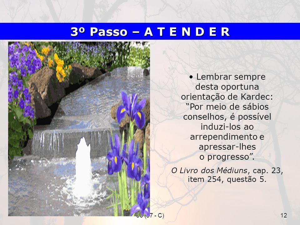 36 (37 - C)12 Lembrar sempre desta oportuna orientação de Kardec: Por meio de sábios conselhos, é possível induzi-los ao arrependimento e apressar-lhe