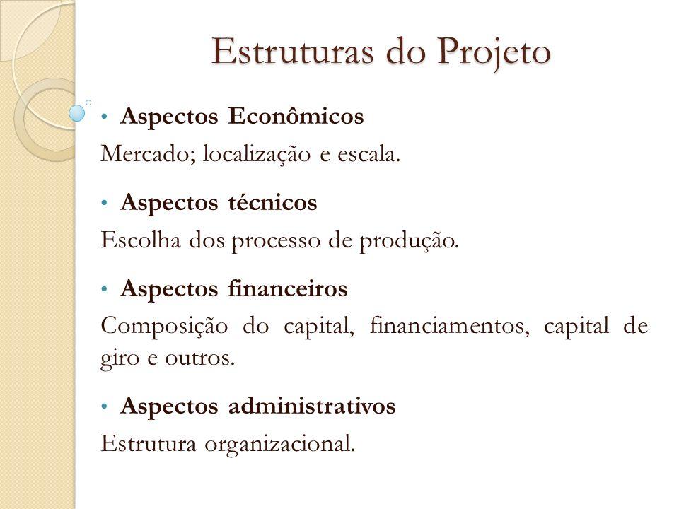 Estruturas do Projeto Aspectos Econômicos Mercado; localização e escala. Aspectos técnicos Escolha dos processo de produção. Aspectos financeiros Comp