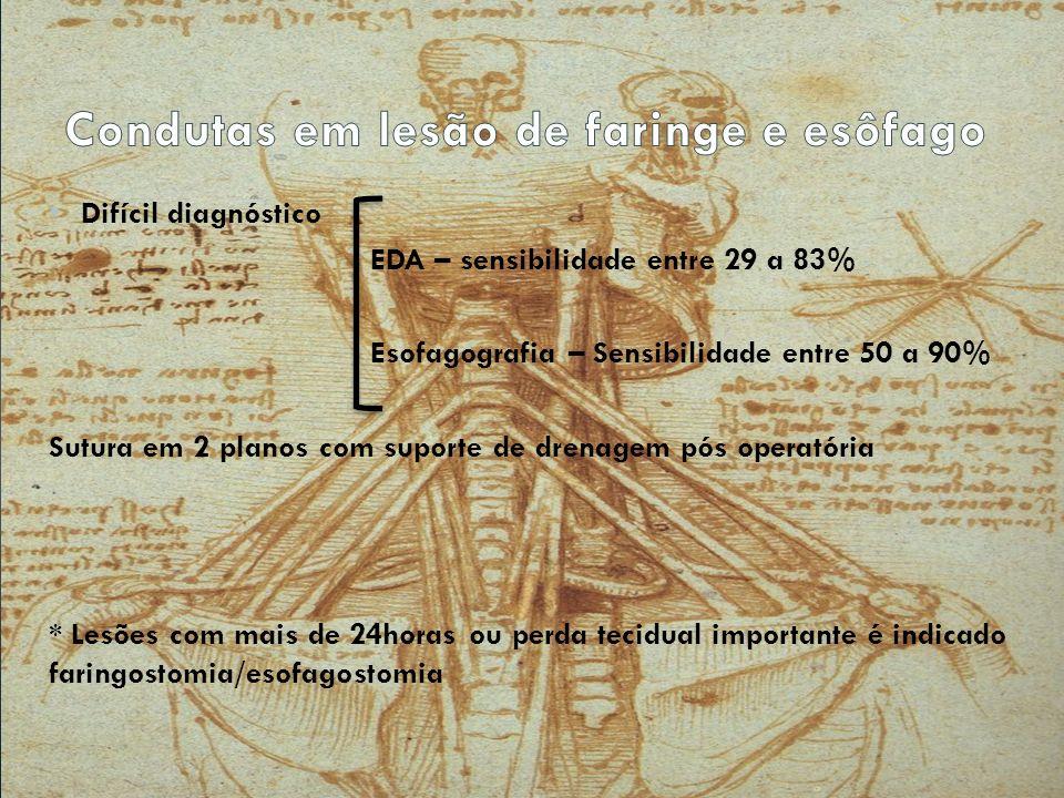Avaliação Plexo braquial N.cervical profundo N. frênico Nn.
