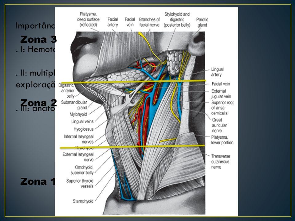Importância das regiões anatômicas:.I: Hemotórax associado a lesões de vasos subclávios..
