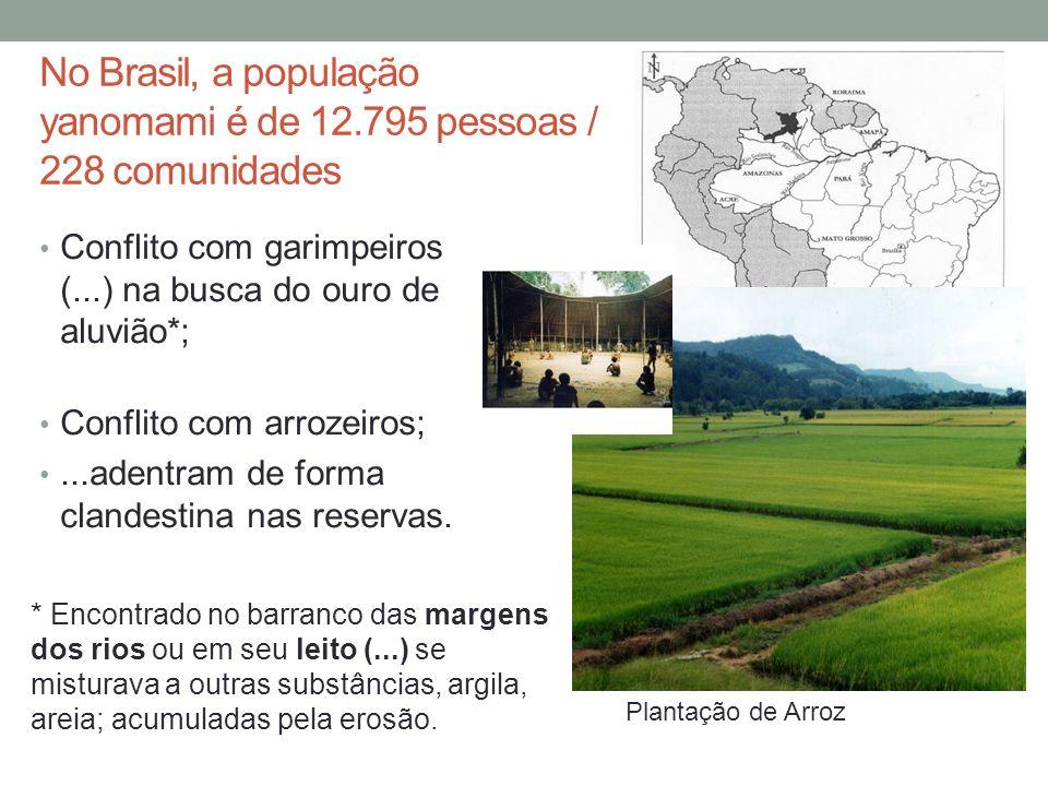 No Brasil, a população yanomami é de 12.795 pessoas / 228 comunidades Conflito com garimpeiros (...) na busca do ouro de aluvião*; Conflito com arroze