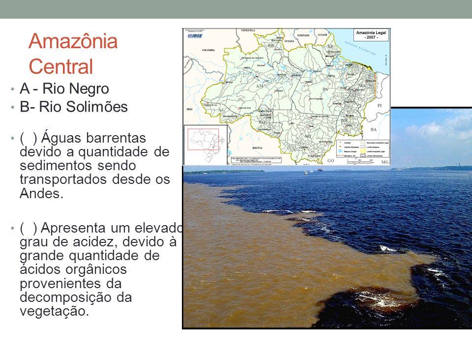 A - Rio Negro B- Rio Solimões ( ) Águas barrentas devido a quantidade de sedimentos sendo transportados desde os Andes. ( ) Apresenta um elevado grau