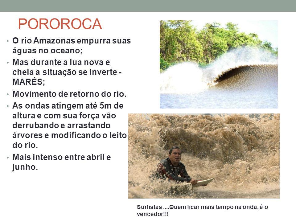 POROROCA O rio Amazonas empurra suas águas no oceano; Mas durante a lua nova e cheia a situação se inverte - MARÉS; Movimento de retorno do rio. As on