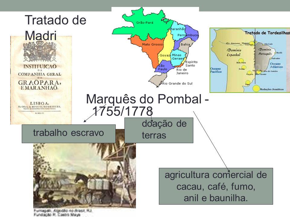 Marquês do Pombal - 1755/1778 trabalho escravo doação de terras agricultura comercial de cacau, café, fumo, anil e baunilha. Tratado de Madri
