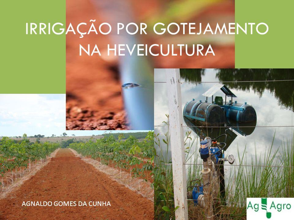 CONCLUSÃO O SISTEMA DE IRRIGAÇÃO POR GOTEJAMENTO: -PONTENCIALIZAM O DESENVOLVIMENTO DA CULTURA.