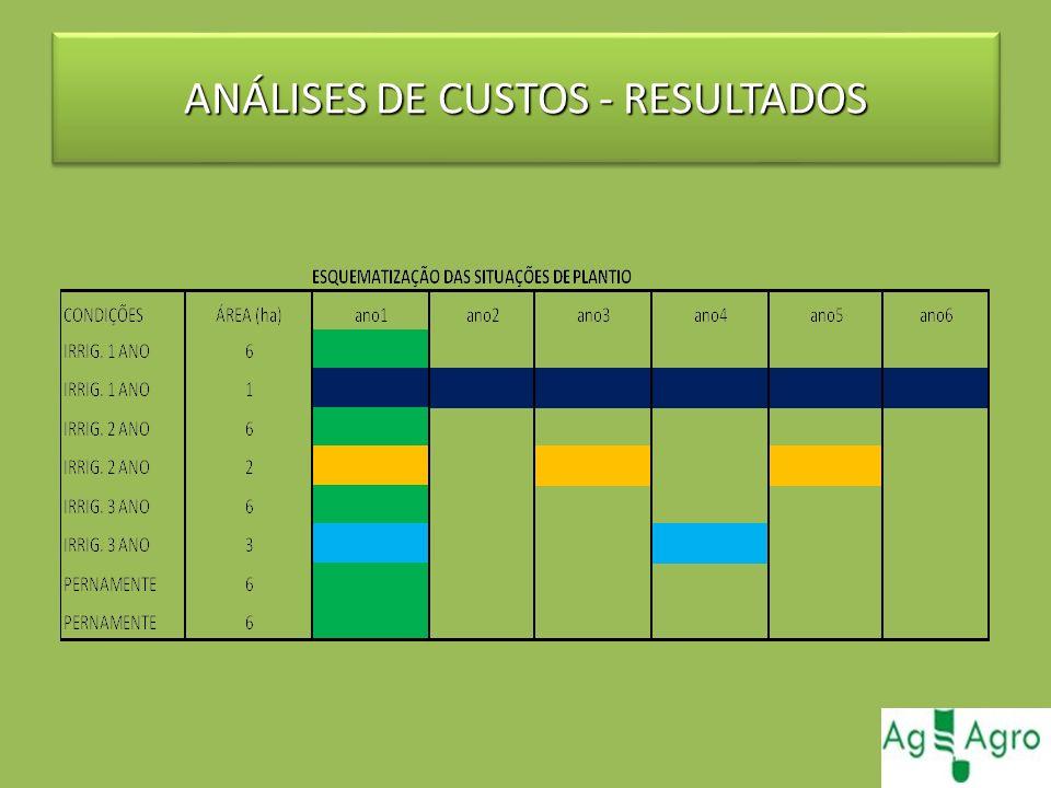 ANÁLISES DE CUSTOS - RESULTADOS