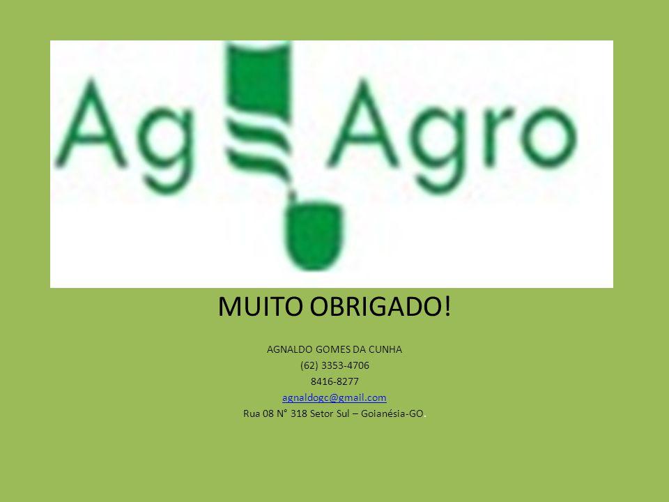 MUITO OBRIGADO! AGNALDO GOMES DA CUNHA (62) 3353-4706 8416-8277 agnaldogc@gmail.com Rua 08 N° 318 Setor Sul – Goianésia-GO.