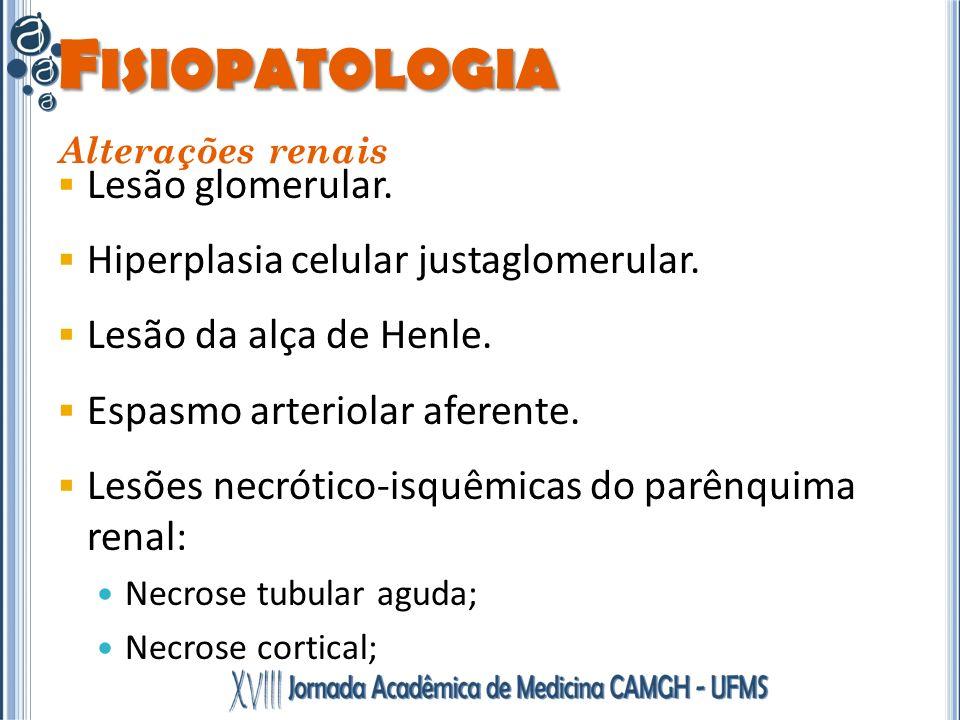 F ISIOPATOLOGIA Alterações renais Lesão glomerular. Hiperplasia celular justaglomerular. Lesão da alça de Henle. Espasmo arteriolar aferente. Lesões n