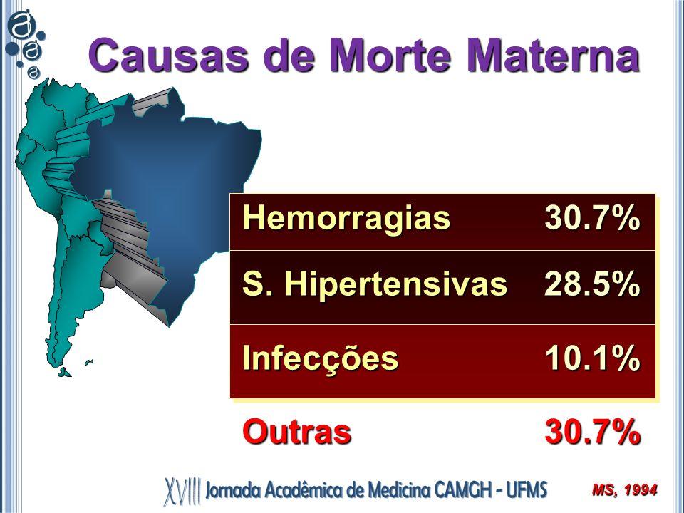 Causas de Morte Materna Hemorragias S. Hipertensivas InfecçõesOutras30.7%28.5%10.1%30.7% MS, 1994