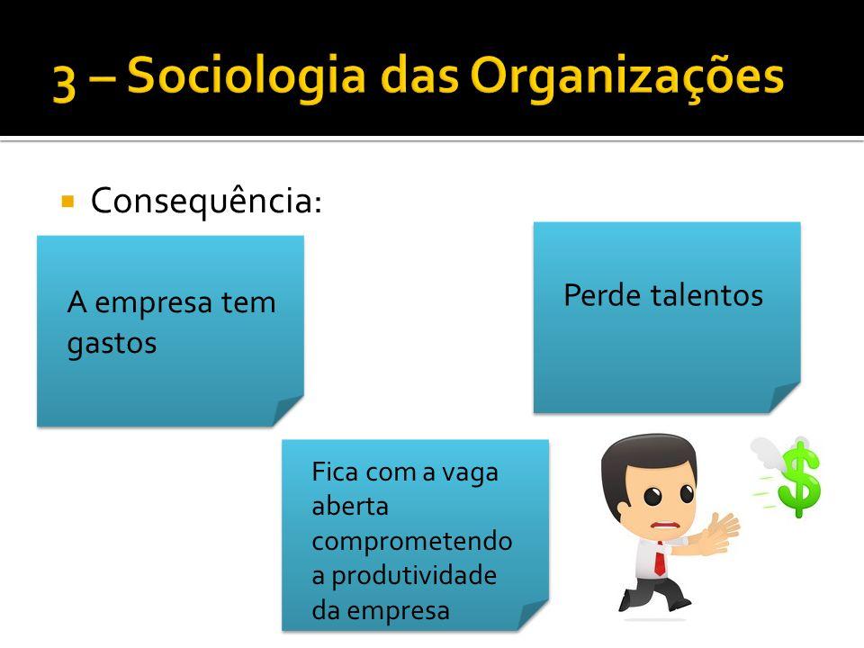 Consequência: A empresa tem gastos Perde talentos Fica com a vaga aberta comprometendo a produtividade da empresa