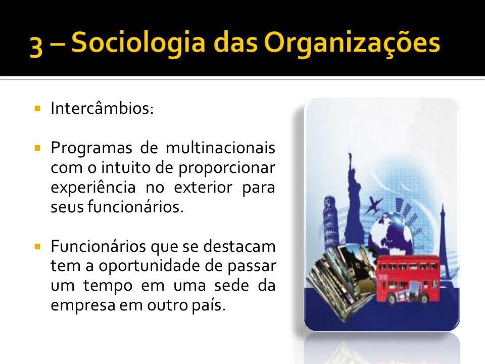 Intercâmbios: Programas de multinacionais com o intuito de proporcionar experiência no exterior para seus funcionários.