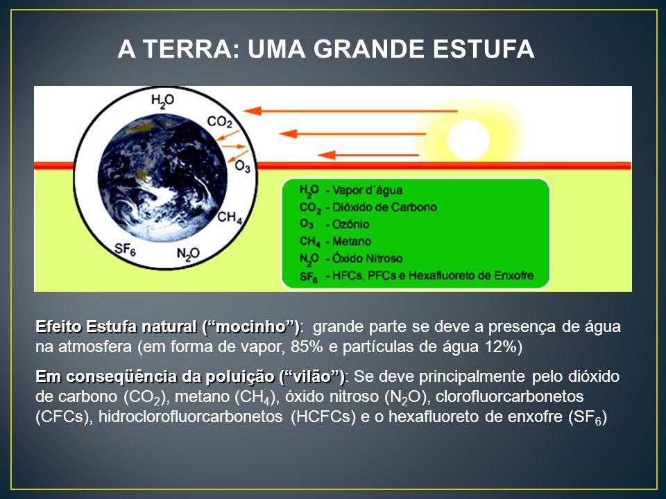 Efeito Estufa natural (mocinho) Efeito Estufa natural (mocinho): grande parte se deve a presença de água na atmosfera (em forma de vapor, 85% e partíc