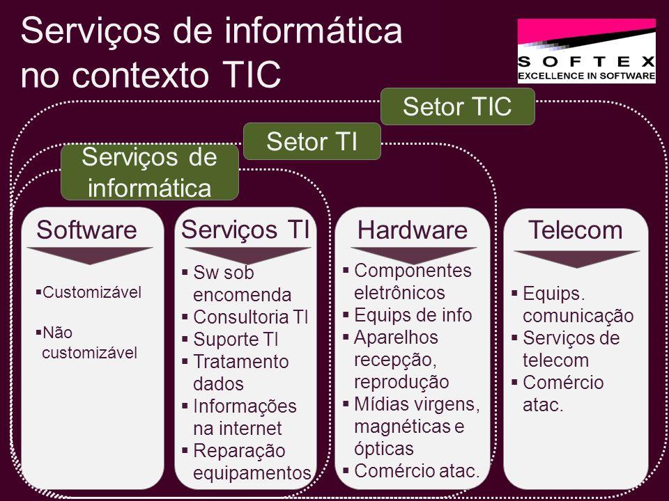 Software Serviços TI Customizável Não customizável Sw sob encomenda Consultoria TI Suporte TI Tratamento dados Informações na internet Reparação equip