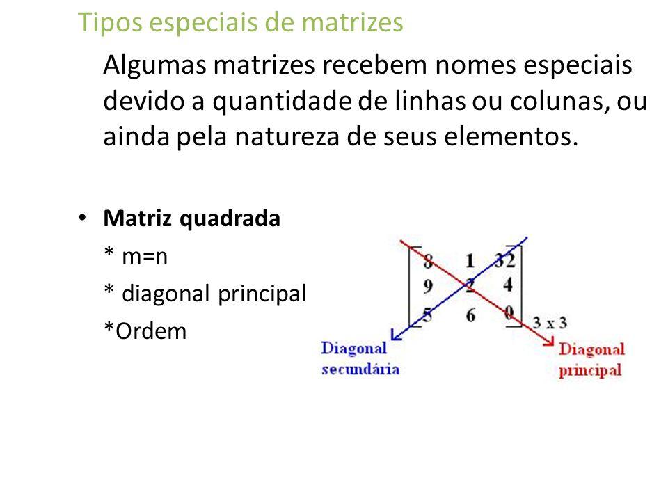 Tipos especiais de matrizes Algumas matrizes recebem nomes especiais devido a quantidade de linhas ou colunas, ou ainda pela natureza de seus elemento