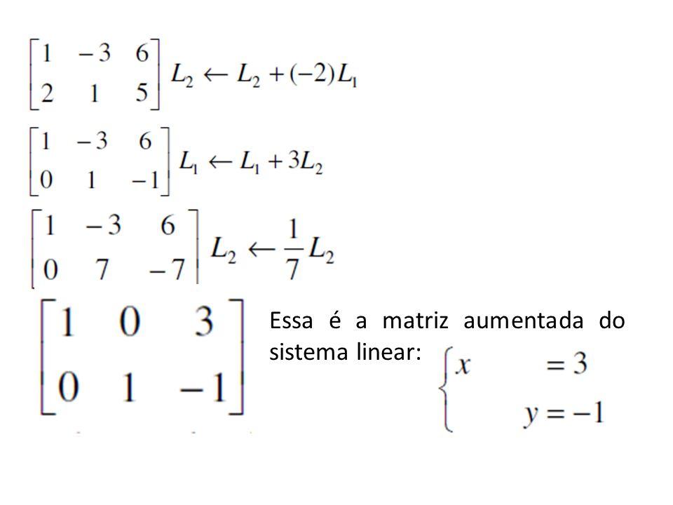 Essa é a matriz aumentada do sistema linear: