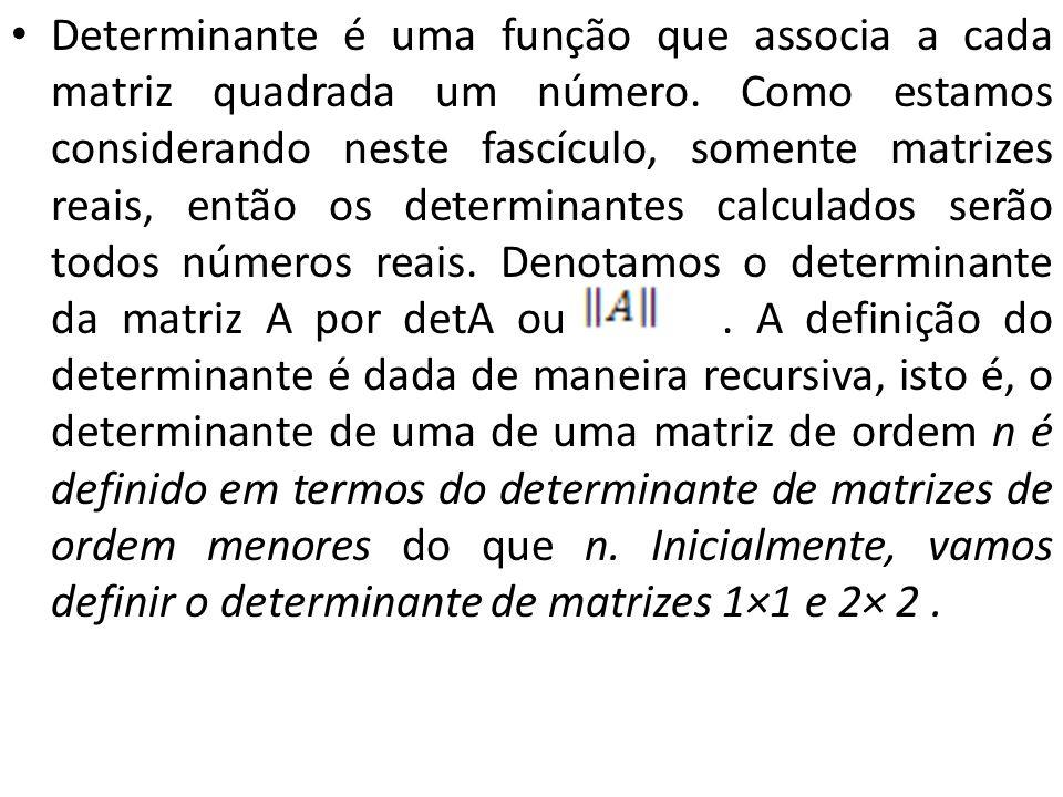 Determinante é uma função que associa a cada matriz quadrada um número. Como estamos considerando neste fascículo, somente matrizes reais, então os de