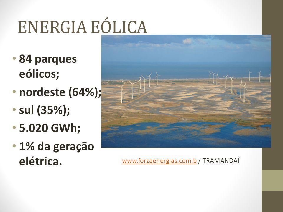 ENERGIA EÓLICA 84 parques eólicos; nordeste (64%); sul (35%); 5.020 GWh; 1% da geração elétrica.