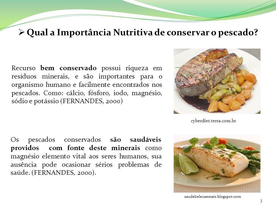 Qual a Importância Nutritiva de conservar o pescado? Recurso bem conservado possui riqueza em resíduos minerais, e são importantes para o organismo hu