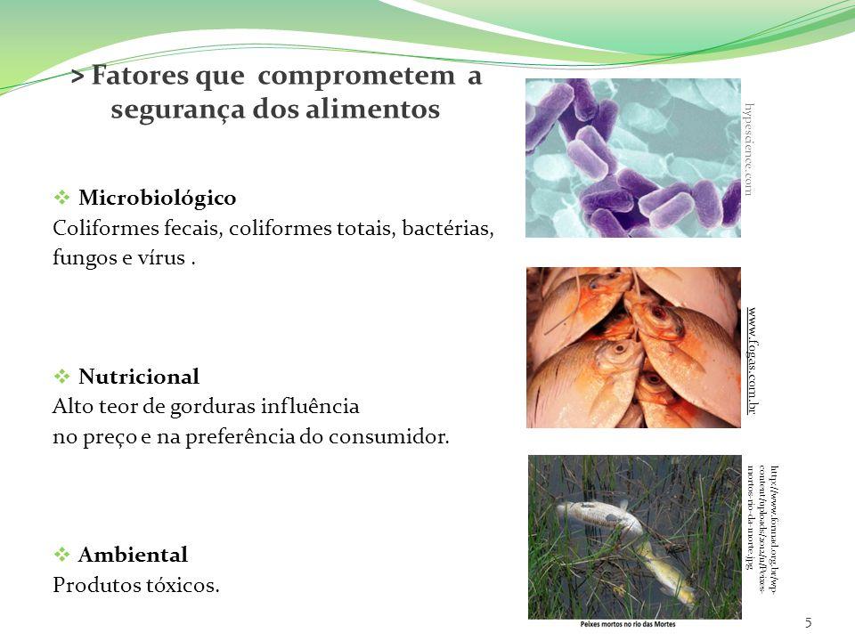 > Fatores que comprometem a segurança dos alimentos Microbiológico Coliformes fecais, coliformes totais, bactérias, fungos e vírus. Nutricional Alto t