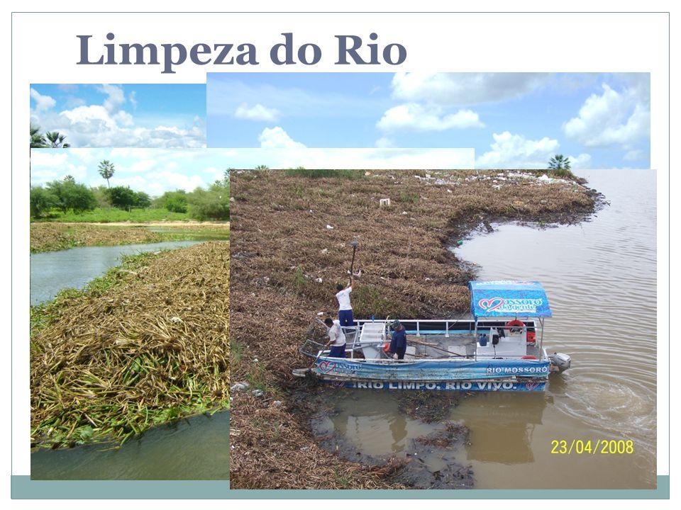 Limpeza do Rio