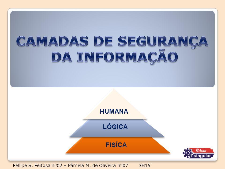 FISÍCA LÓGICA HUMANA Fellipe S. Feitosa nº02 – Pâmela M. de Oliveira nº07 3H15