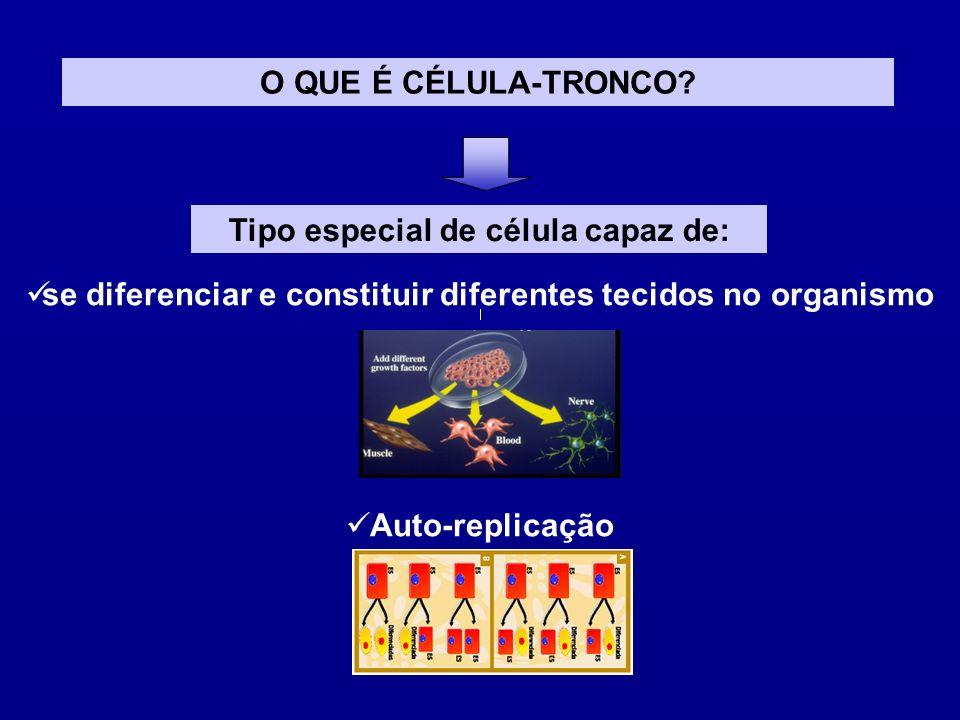 CÉLULAS TRONCO EMBRIONÁRIAS Proveniência Blastocistos obtidos a partir de fertilização in vitro Embriões/fetos abortados Originam todo tipo de tecidos (pluripotentes) Clonagem (SCNT)