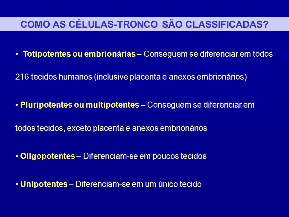 Desenvolvimento Humano Célula-tronco Embrionária Totipotente Célula-tronco Embrionária Pluripotente Célula-tronco Embrionária (Células germinais primordiais) Pluripotente CT do tecido fetal Pluripotente CT do cordão umbilical e/ou placenta Pluripotente Célula-tronco Adulto Pluripotente CT de carcinoma embrional Pluripotente Teratocarcinoma Célula ovo embrião embrião c/ 3 dias embrião c/ 5-7 dias embrião c/ 4 semanas embrião c/ 6 semanas Recém- nascido Adulto CÉLULAS-TRONCO