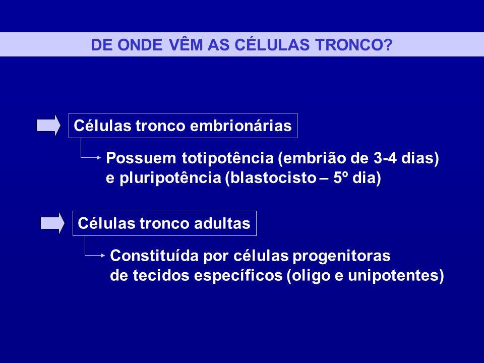 CÉLULAS TRONCO EMBRIONÁRIAS OU EMBRIÔNICAS