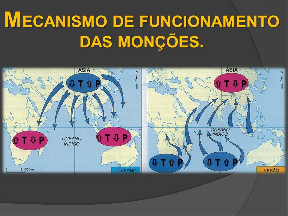 M ECANISMO DE FUNCIONAMENTO DAS MONÇÕES. T P T P