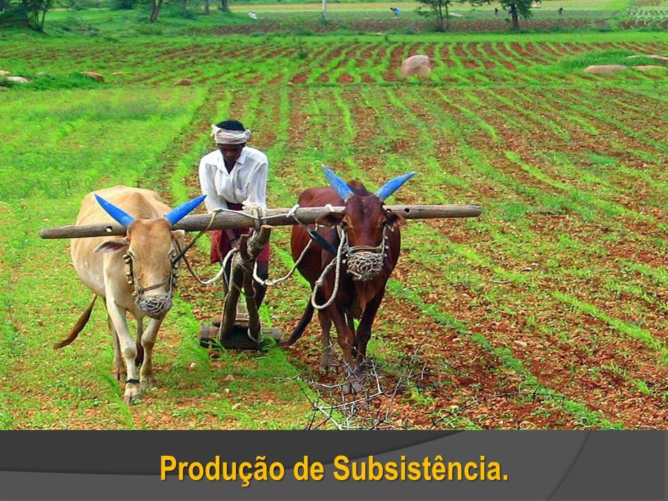 Produção de Subsistência.
