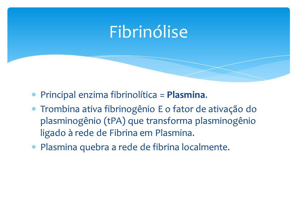 Principal enzima fibrinolítica = Plasmina. Trombina ativa fibrinogênio E o fator de ativação do plasminogênio (tPA) que transforma plasminogênio ligad