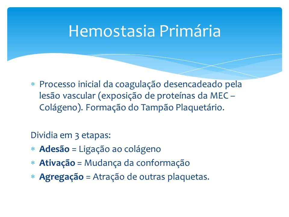 Trombo Branco: Formados em áreas de alto fluxo: ventrículos, valvas e artérias.