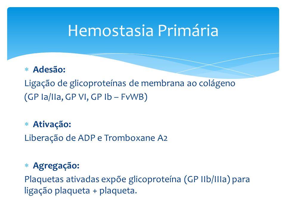 Adesão: Ligação de glicoproteínas de membrana ao colágeno (GP Ia/IIa, GP VI, GP Ib – FvWB) Ativação: Liberação de ADP e Tromboxane A2 Agregação: Plaqu