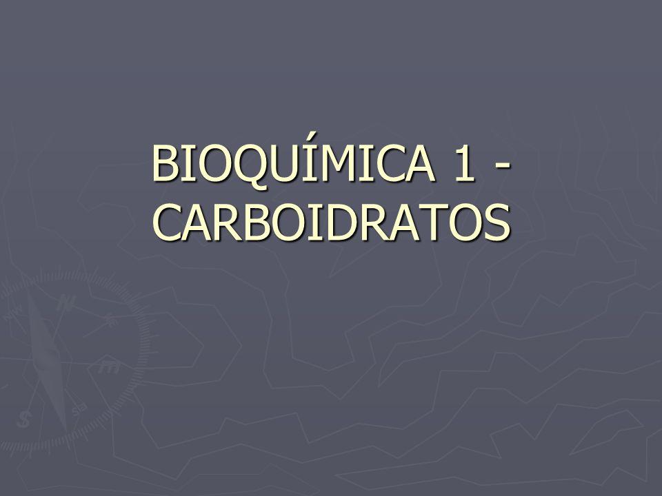 Excesso Os carboidratos, quando em excesso no organismo, transformam-se em gordura e ficam acumulados nos adipósitos, podendo causar obesidade e arterosclerose Os carboidratos, quando em excesso no organismo, transformam-se em gordura e ficam acumulados nos adipósitos, podendo causar obesidade e arterosclerose (aumento dos triglicerídeos sangüíneos).