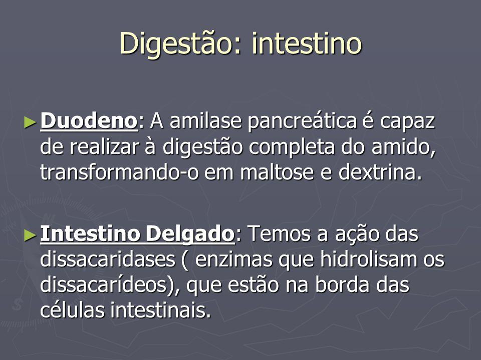 Digestão: intestino Duodeno: A amilase pancreática é capaz de realizar à digestão completa do amido, transformando-o em maltose e dextrina. Duodeno: A