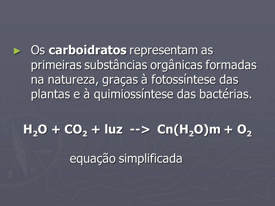 Os carboidratos representam as primeiras substâncias orgânicas formadas na natureza, graças à fotossíntese das plantas e à quimiossíntese das bactéria