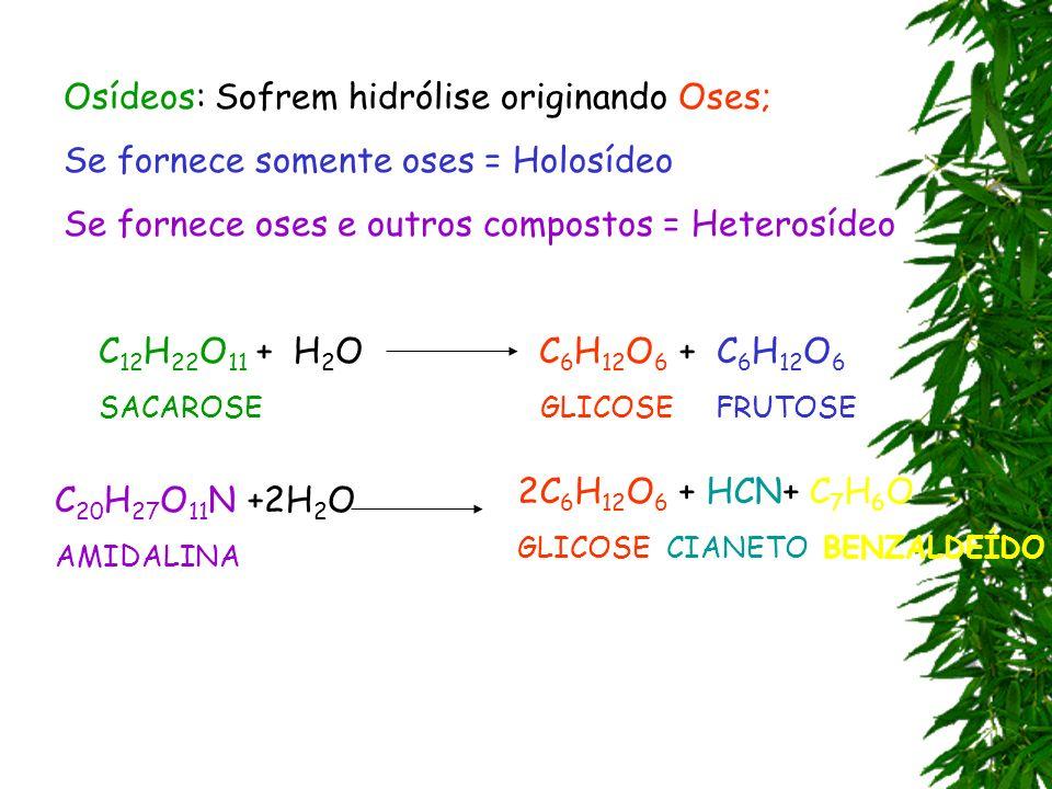 Osídeos: Sofrem hidrólise originando Oses; Se fornece somente oses = Holosídeo Se fornece oses e outros compostos = Heterosídeo C 12 H 22 O 11 + H 2 O