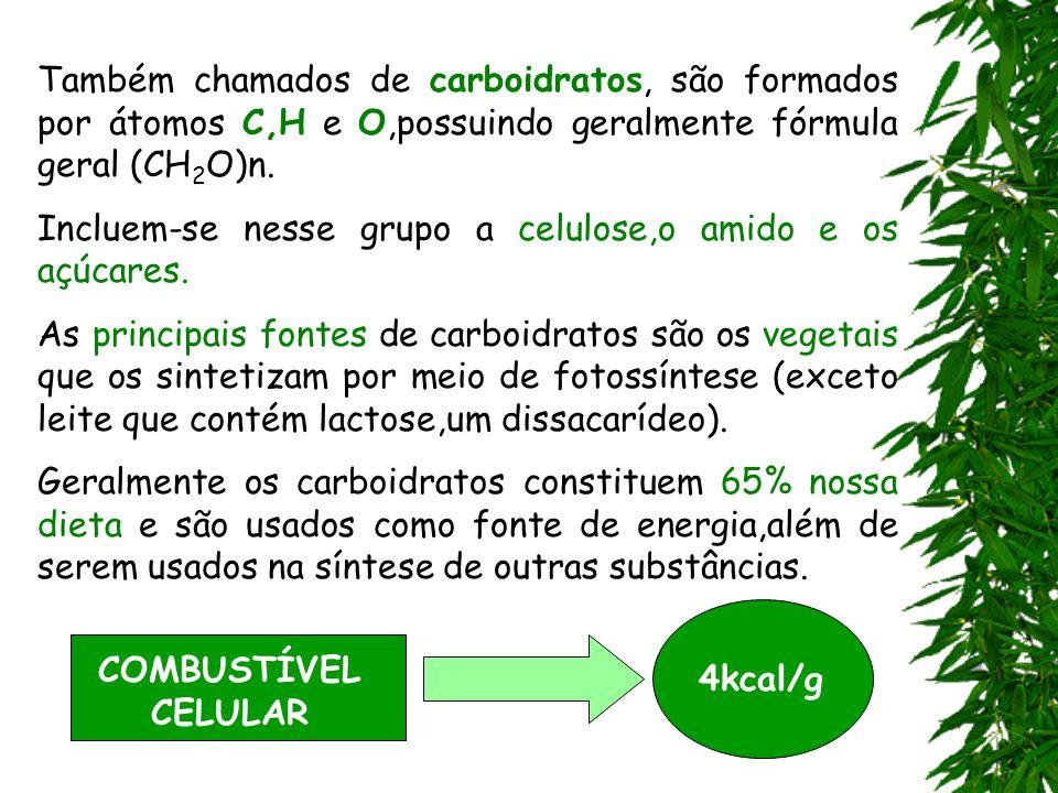 Também chamados de carboidratos, são formados por átomos C,H e O,possuindo geralmente fórmula geral (CH 2 O)n. Incluem-se nesse grupo a celulose,o ami