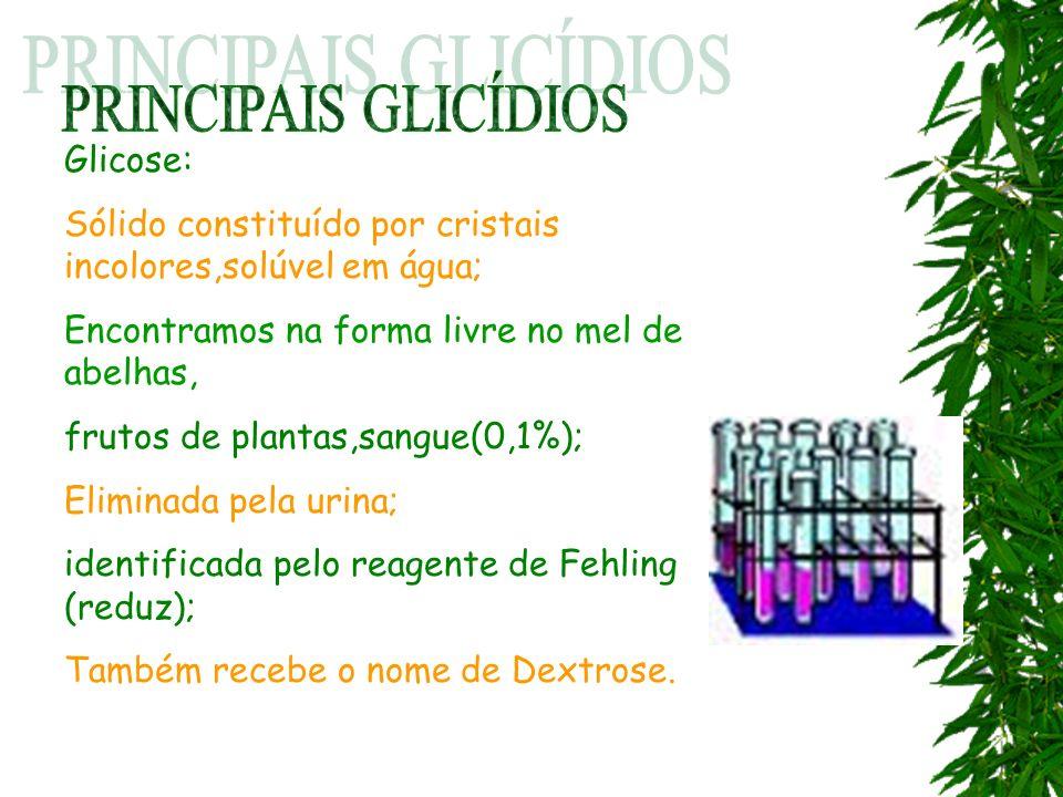 Glicose: Sólido constituído por cristais incolores,solúvel em água; Encontramos na forma livre no mel de abelhas, frutos de plantas,sangue(0,1%); Elim