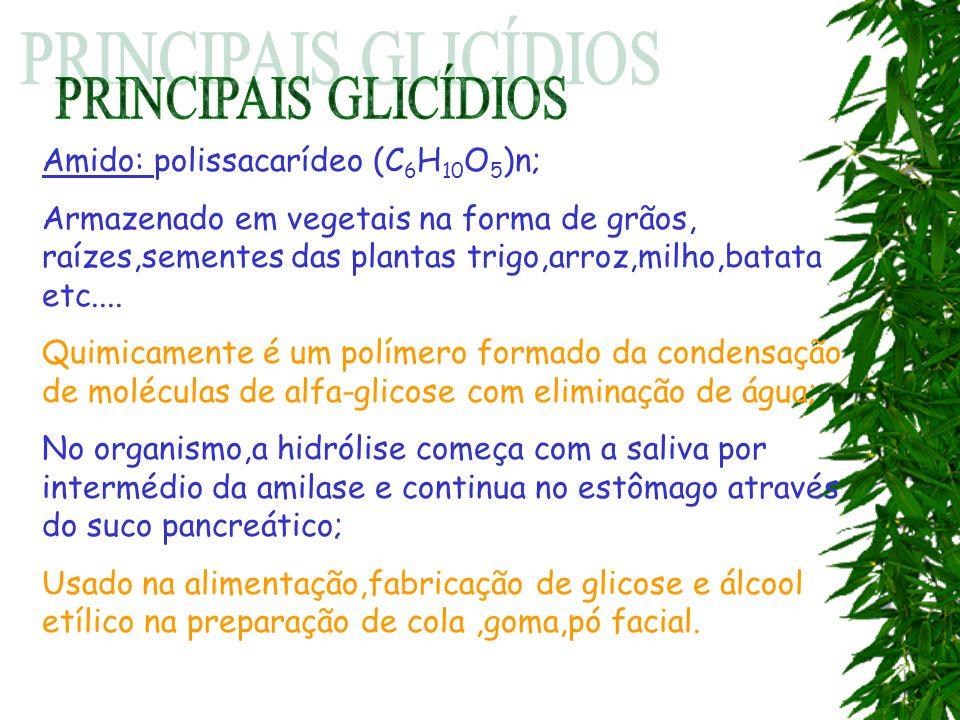 Amido: polissacarídeo (C 6 H 10 O 5 )n; Armazenado em vegetais na forma de grãos, raízes,sementes das plantas trigo,arroz,milho,batata etc.... Quimica