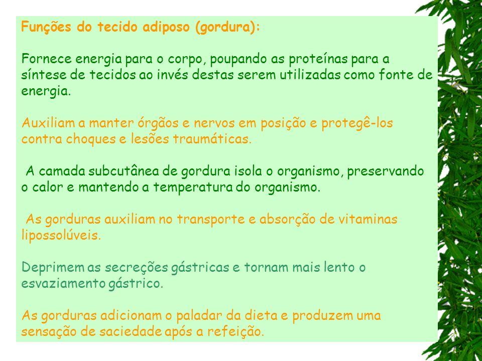 Funções do tecido adiposo (gordura): Fornece energia para o corpo, poupando as proteínas para a síntese de tecidos ao invés destas serem utilizadas co