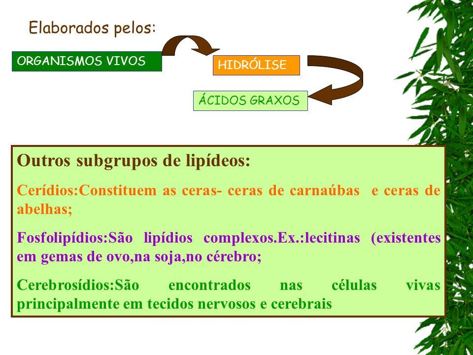 HIDRÓLISE ÁCIDOS GRAXOS ORGANISMOS VIVOS Elaborados pelos: Outros subgrupos de lipídeos: Cerídios:Constituem as ceras- ceras de carnaúbas e ceras de a