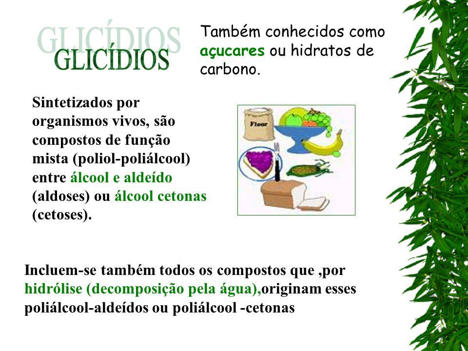 Também conhecidos como açucares ou hidratos de carbono. Sintetizados por organismos vivos, são compostos de função mista (poliol-poliálcool) entre álc