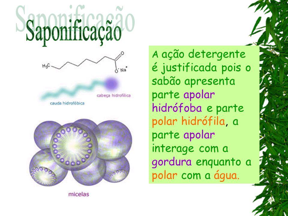 A ação detergente é justificada pois o sabão apresenta parte apolar hidrófoba e parte polar hidrófila, a parte apolar interage com a gordura enquanto