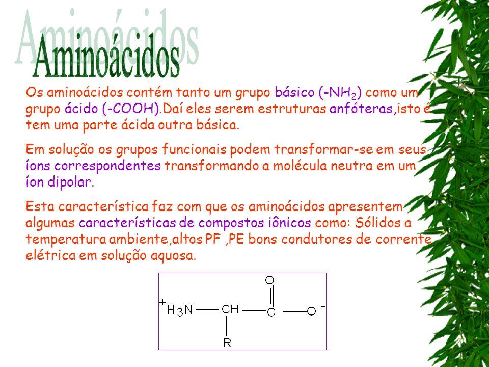 Os aminoácidos contém tanto um grupo básico (-NH 2 ) como um grupo ácido (-COOH).Daí eles serem estruturas anfóteras,isto é tem uma parte ácida outra