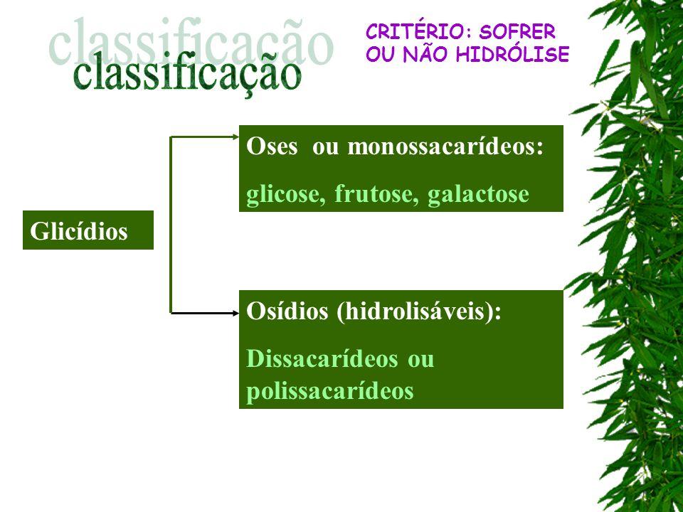 Monossacarídeos: Não sofrem hidrólise glicose Frutose manose galactose São isômeros e apresentam fórmula molecular C 6 H 12 O 6